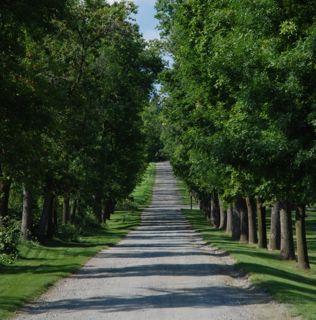 path2 A Mediation Roadmap