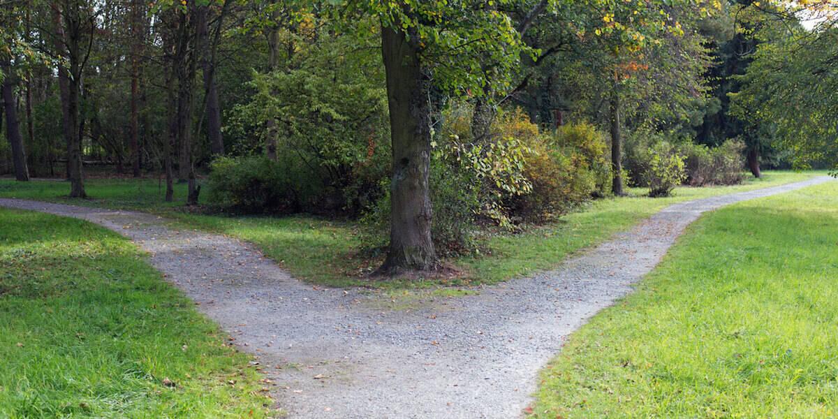 diverging path